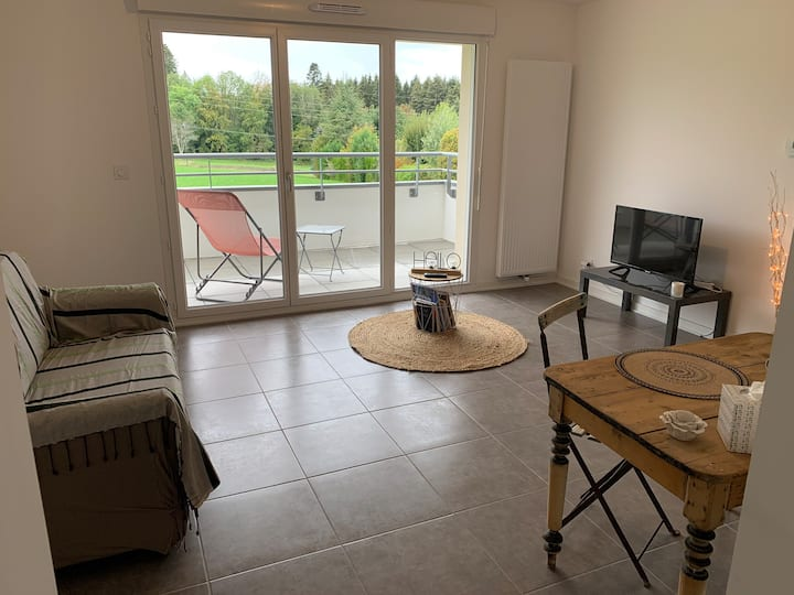 Superbe appartement T2, lumineux