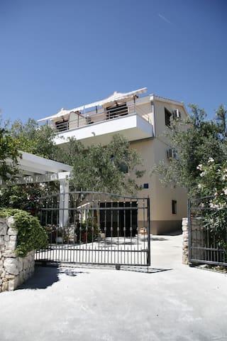 Apartman Kažimir (45021-A2)