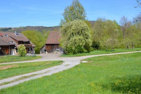 Gemütliche Ferienwohnung in ehemaligem Bauernhof
