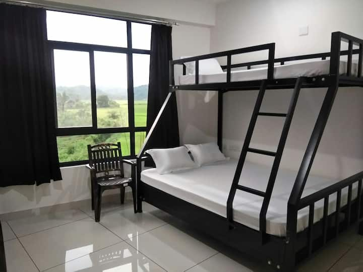 6 Bed Dormitory Room Paddy Field Inn