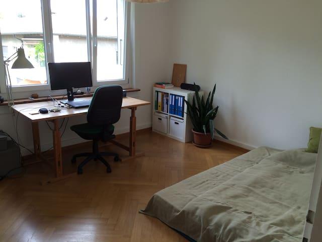 Close to city? Close to nature? Both possible here - Berna - Apartamento