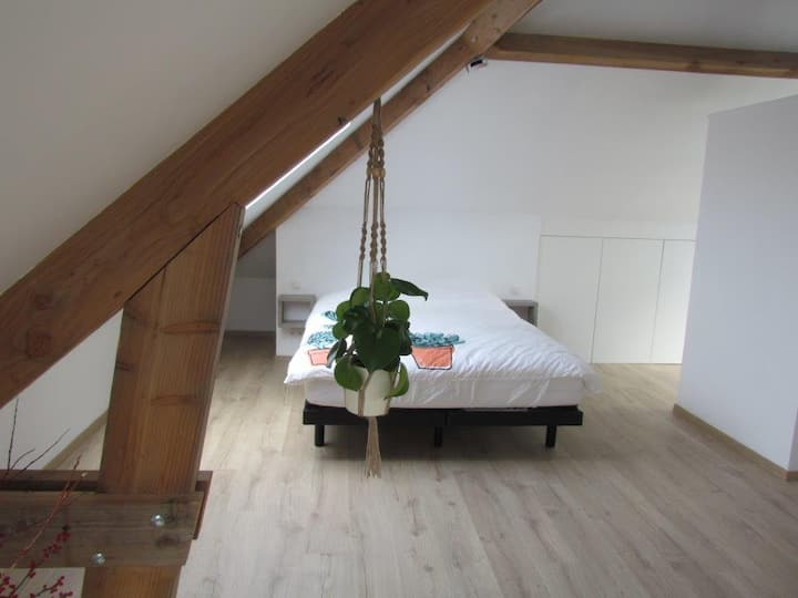 New loft in a cozy mansion house.