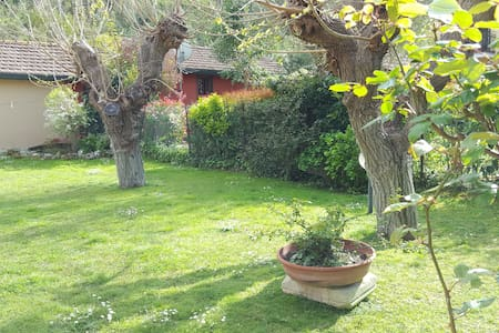 Vacanza Roma Arcobaleno - Rom - Bed & Breakfast