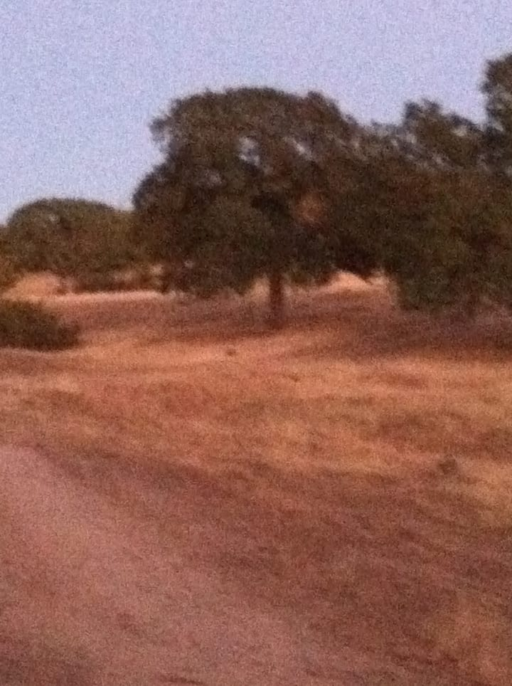 185 acre private use and hunting ranch for rent