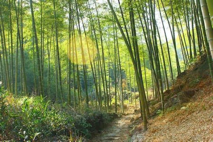 新中式禅意空间,在绿色呼吸中静心聆听山间的鸟鸣,潺潺的流水,感受美好 - 绍兴市 - House
