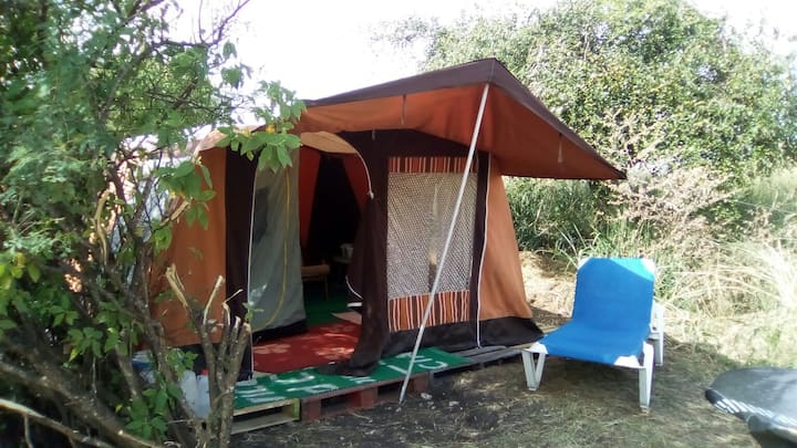 South Coast Camping @ Eco Camp Barbados (1)