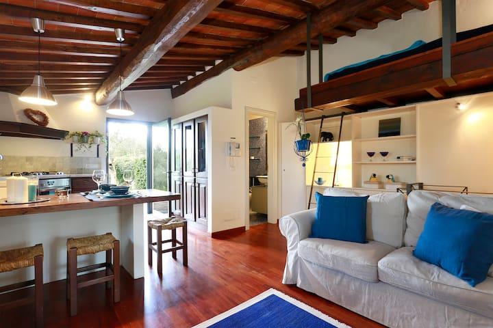 ROMANTIC OLIVER LOFT - CHIANTI - Bagno a Ripoli - Loft