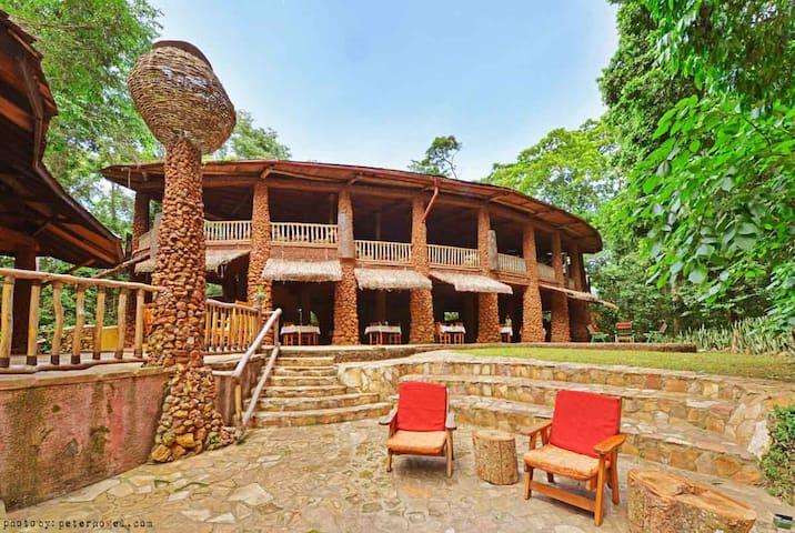 The RainForest Lodge Mabira