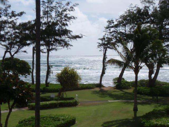 Kauai Ocean View Condo #319