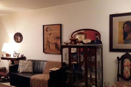 Cozy apartment in trendy neighborhood of São Paulo - São Paulo - Wohnung