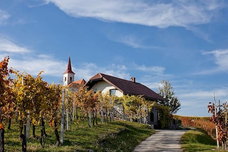 Cottage in the vineyard, airport transfer,car rent