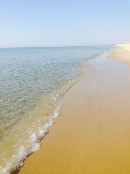 nelle vicinanze: tratto di spiaggia libera - Riva dei Tessali