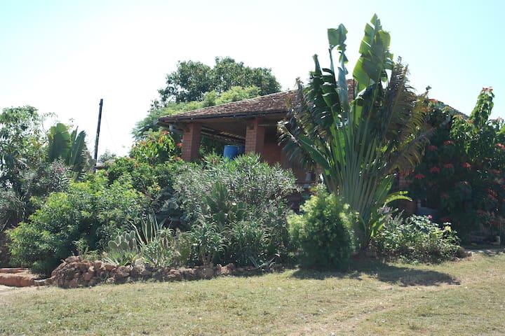Le parfait d'Antananarivo Ivato