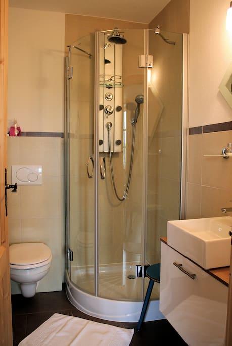 Badezimmer mit Echtglas-Wellneßdusche