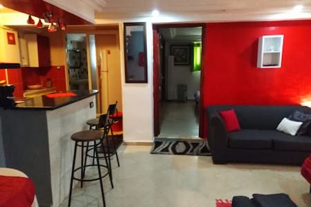 un joli studio +navette aeroport- Appartement