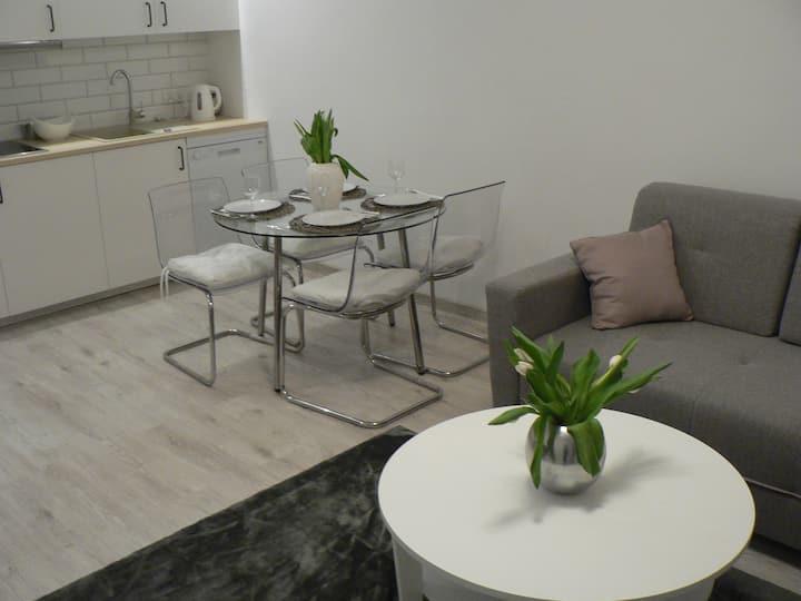 Mieszkanie Apartament  Hel 250 m od morza