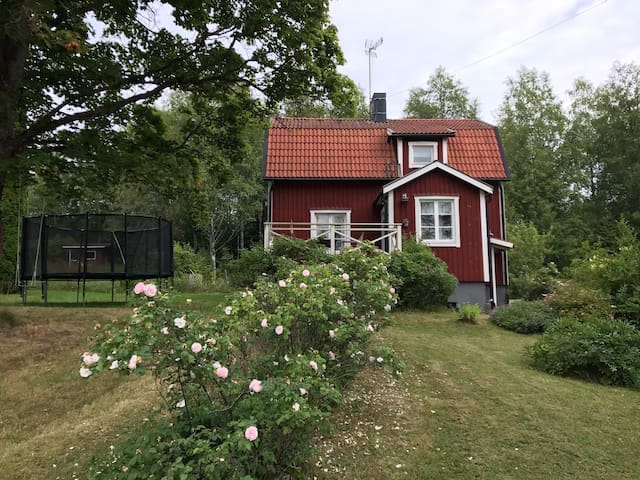 Traditional Swedish cottage with a lake view