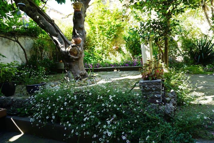 Maison proche centre ville avec jardin et terrasse - Montpellier - Huis