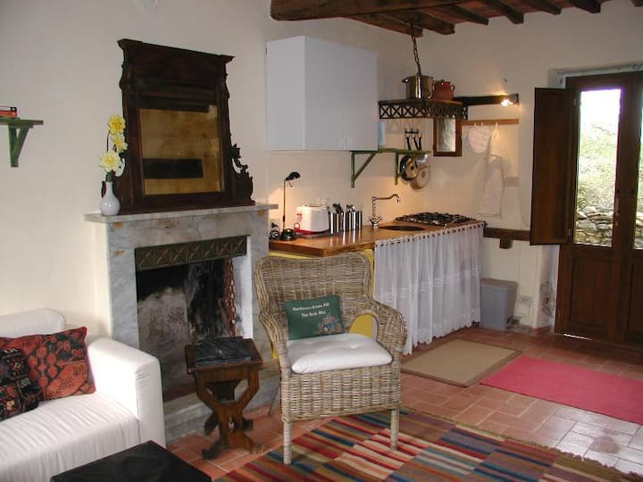 Adorable Tuscan cottage with beautiful garden just outside Lucca, sleeps 4