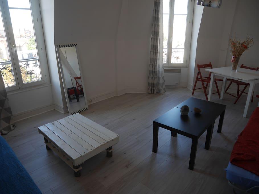 Grande salle à vivre, belle luminosité, agréable et à disposition en plus de la chambre.
