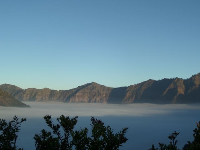 3Bedrooms nearest to Mt. Bromo at Cemara Lawang