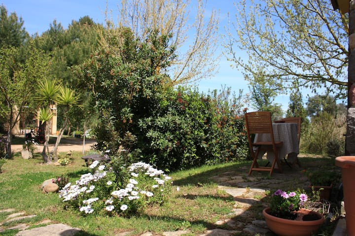 B&B La Noria San Sperate Paese Museo  (CA) - San sperate - Bed & Breakfast