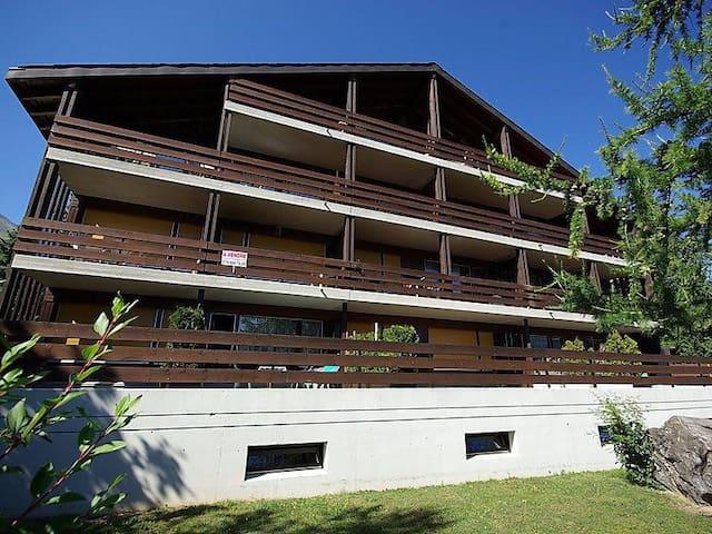 Appartement prive - Leytron - Apartment