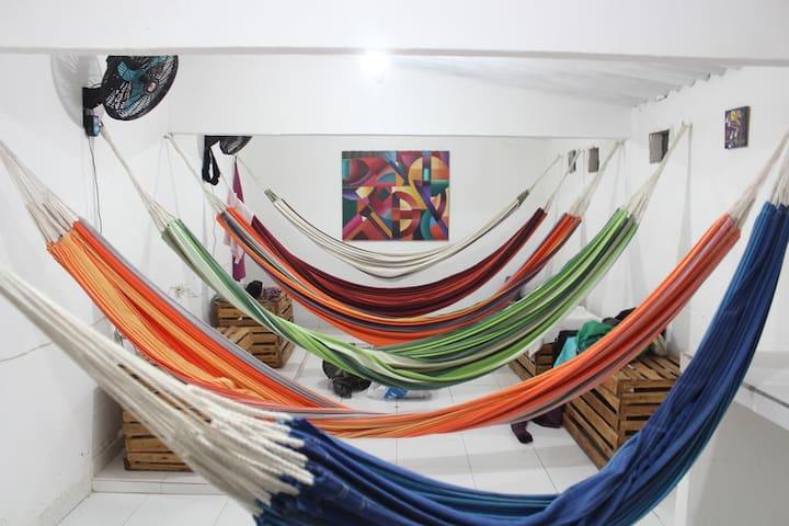 Hammocks Hostel6- Sleep in a hammock 15000COP (4€)