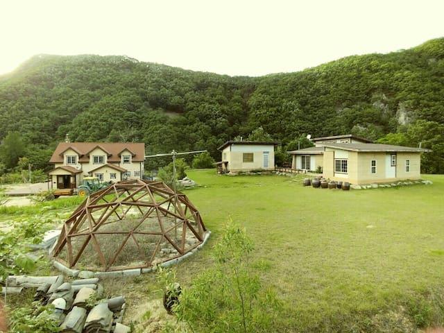 아름다운 낙동강변의 섬, 소목화당(10~13인 60평), 청량산과 도산서원 근거리