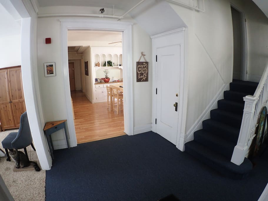 Entry hall. Stairs to your room. Our cat Finnegan is sitting at left.