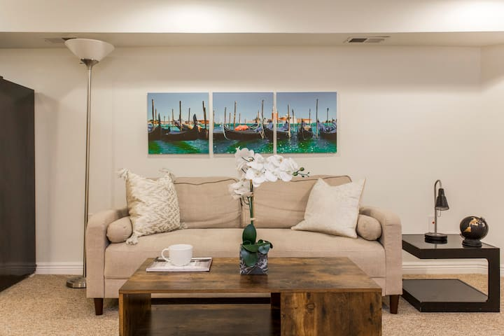 HighSpeed WIFI Gorgeous 1BD/1BA LAKEVIEW Apartment