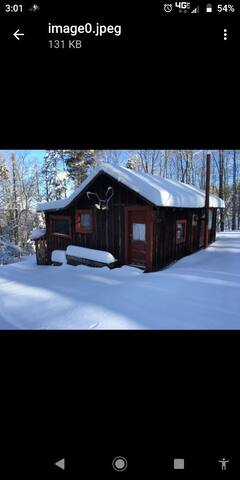 Private cabin on half acre of land