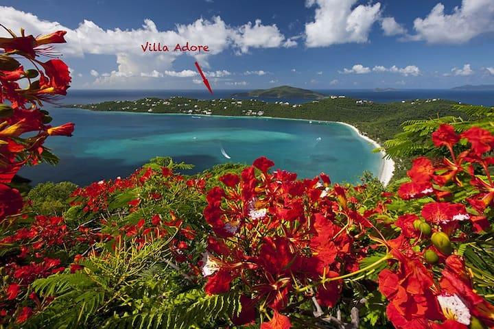 Studio Adore - Charlotte Amalie