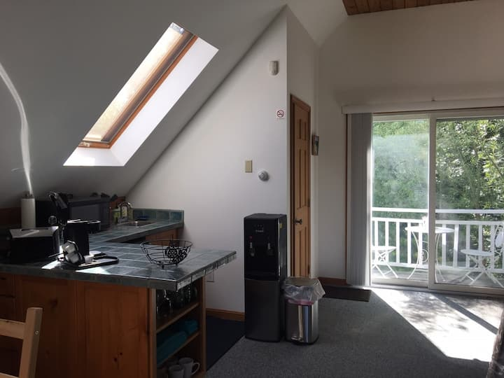 Gorgeous, large, sunny, private studio, 2 guests