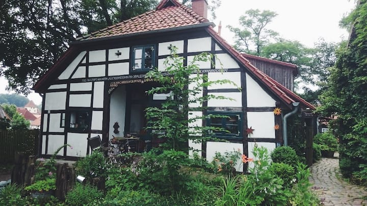 Traumwohnung über den Dächern von Hankensbüttel