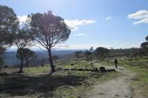 Landscape on the Dolmen trail in winter time
