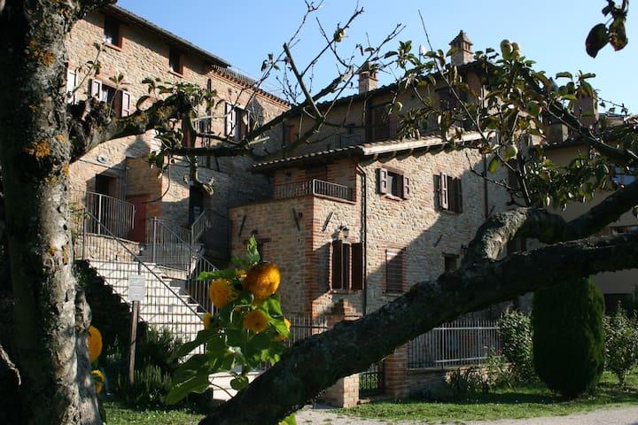 Camere Anatra e Gufo Reale - Casa Zia Egle