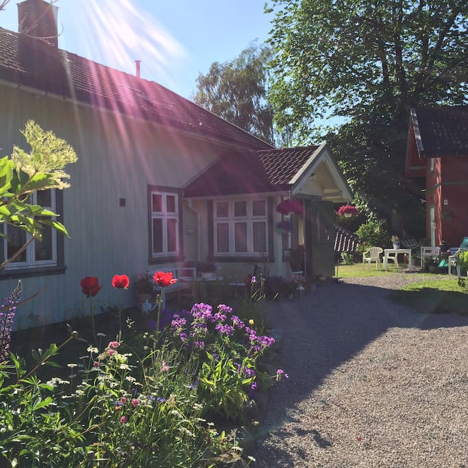 The newly restored swiss style, little  house - with the yard in early summer. Poppies... love them.