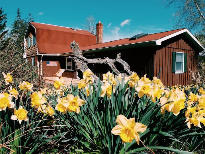 Catskills Retreat on Five Acres
