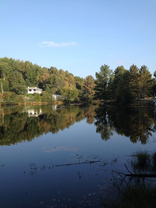 View of cottage from across the pond