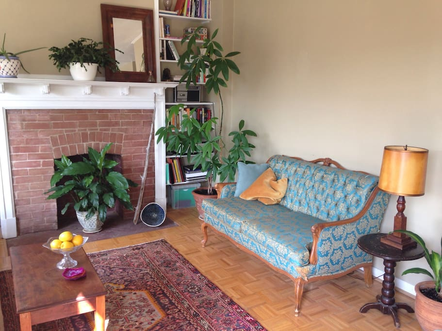 Re-cushioned (and wonderfully comfortable) antique couch, faces the west window, large 4 person couch and looks out over the Toronto treetops. Antique Persian rug. Operational but retired fireplace and tons of plants.