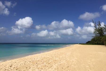 """""""The Playpen Apt"""" On the Beach"""