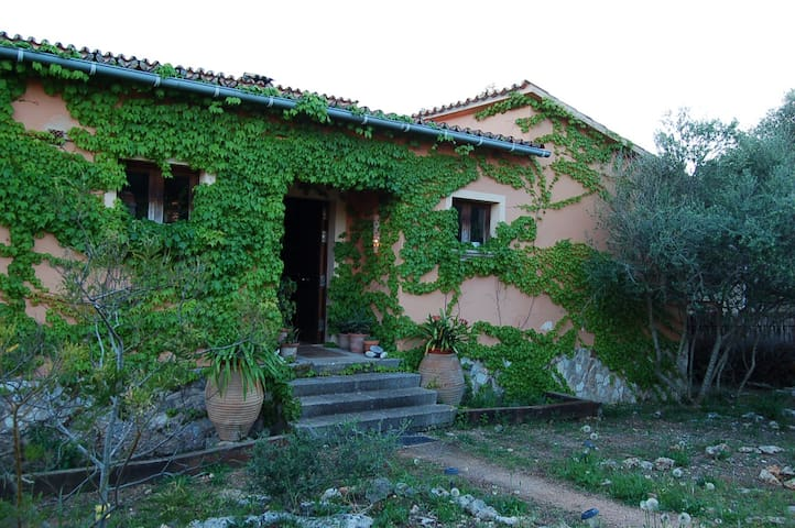 PEACEFUL ROOM WITH TERRACE AND POOL - SA CABANETA - Bed & Breakfast
