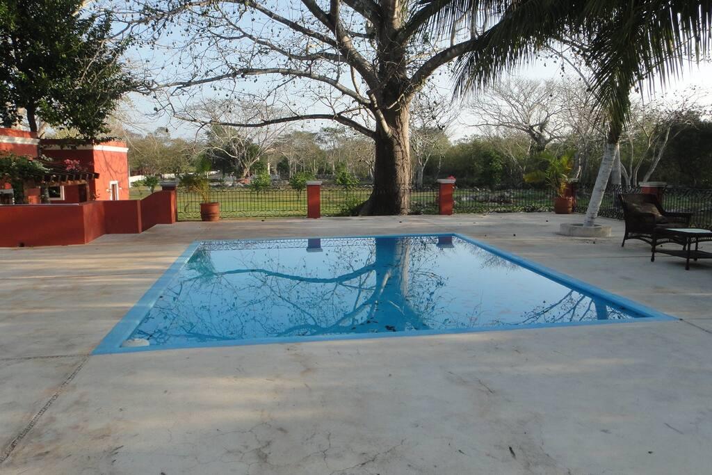 Hacienda swimming pool and area