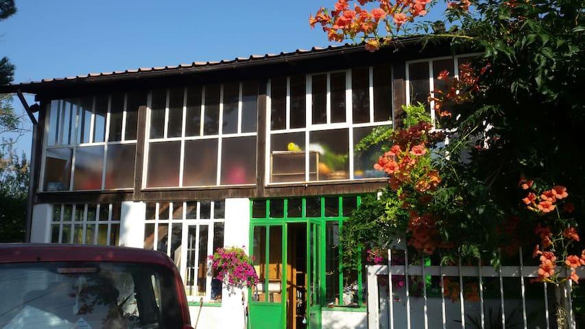 Casa in mezzo alla campagna - Sessame - House