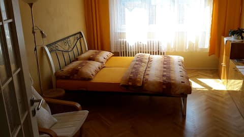 Cozy room near the center of Carlsbad