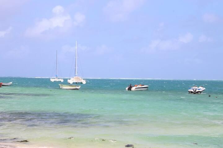 Enjoy village life close to the sea&ile aux cerfs
