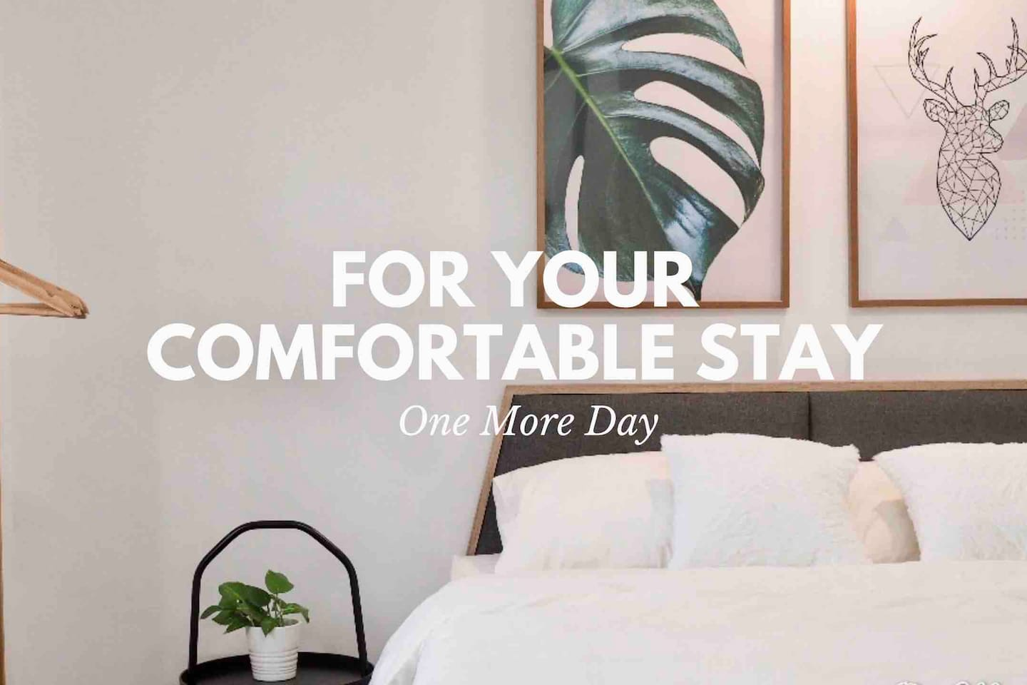 Make your next stay a comfortable stay