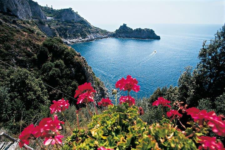 Coastal Cliff 2, Amalfi