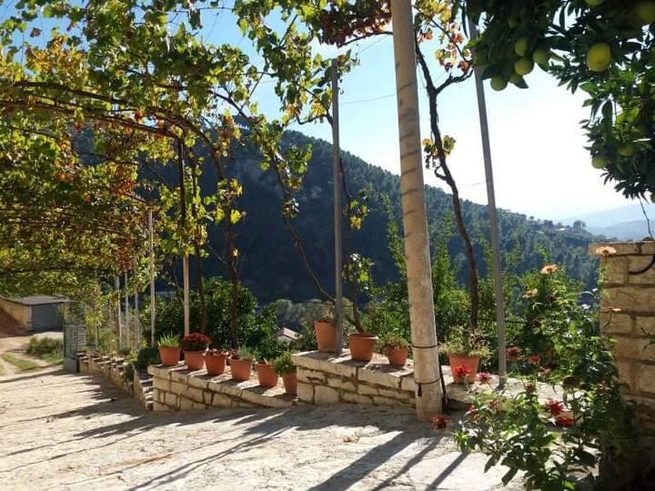 Bienvenue à Green Forest Albanie